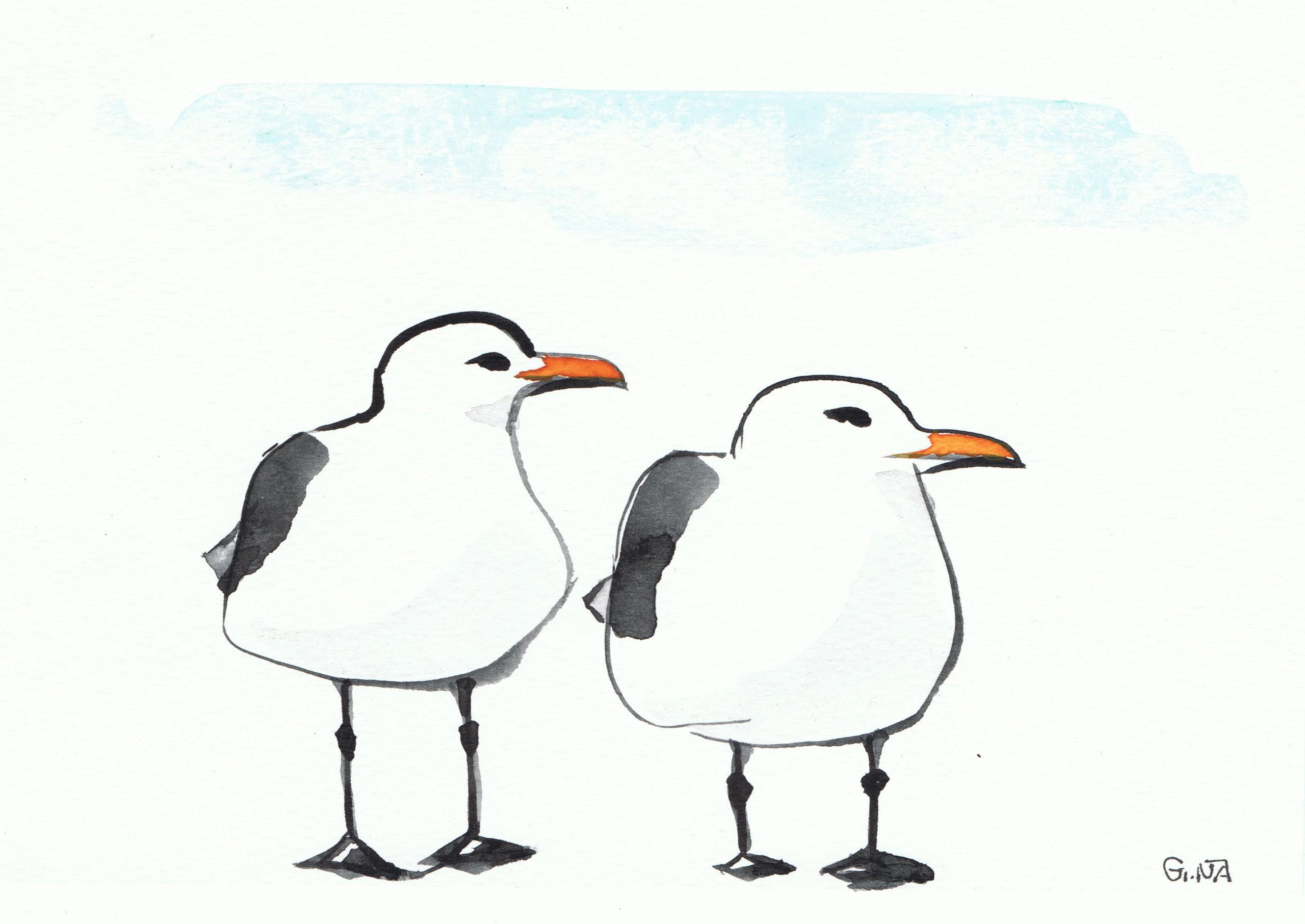 Funny Seagulls Watercolor