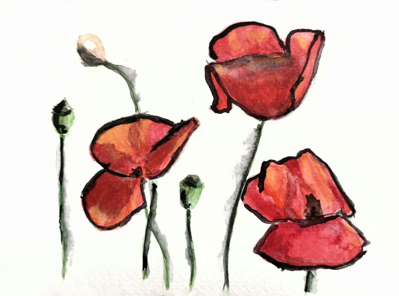 Rough Poppies Watercolor